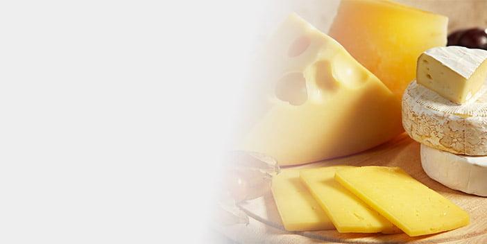 Peynir Tereyağı